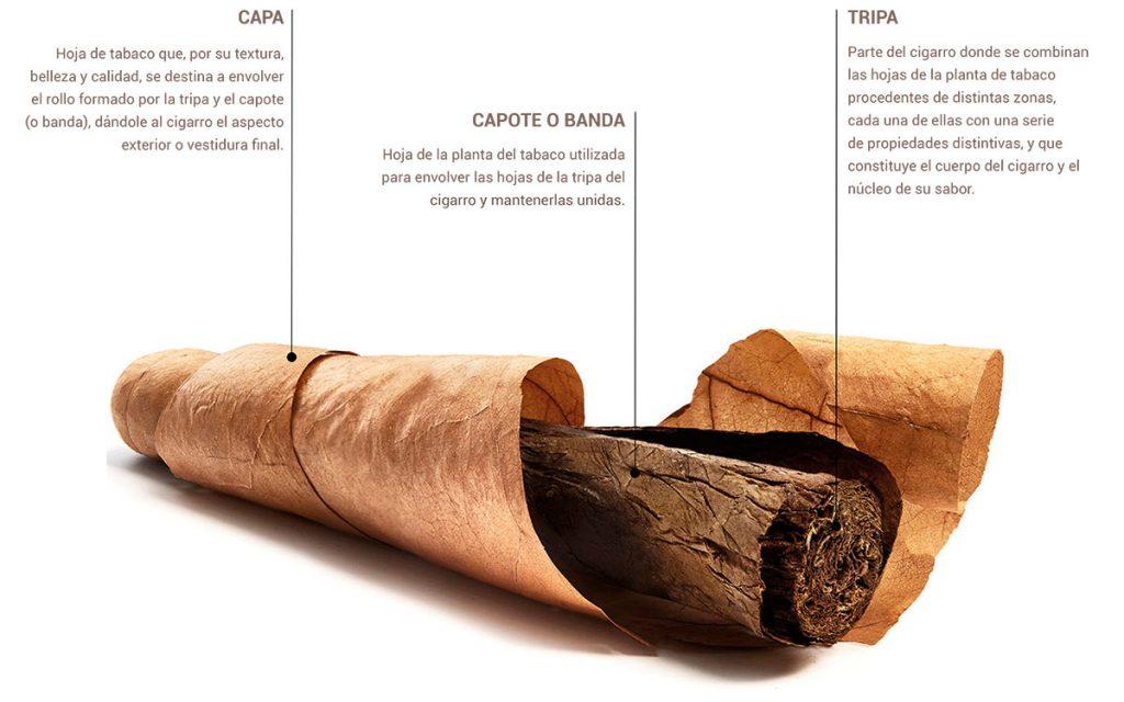 Capa, capote y tripa de un puro o cigarro premium