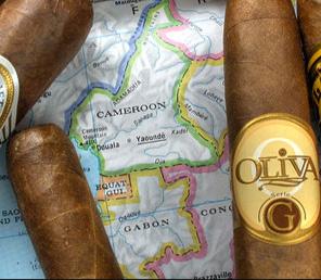 Todos los cigarros de la Serie G de Oliva están elaborados con capa Camerún.