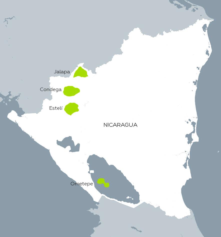 Condega, Estelí, Jalapa y Ometepe son las cuatro regiones nicaragüenses por excelencia para el cultivo de tabaco destinado a elaborar cigarros premium.